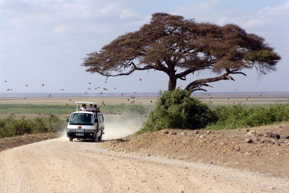 Ce qu'il faut savoir sur le Kenya avant de faire un road-trip